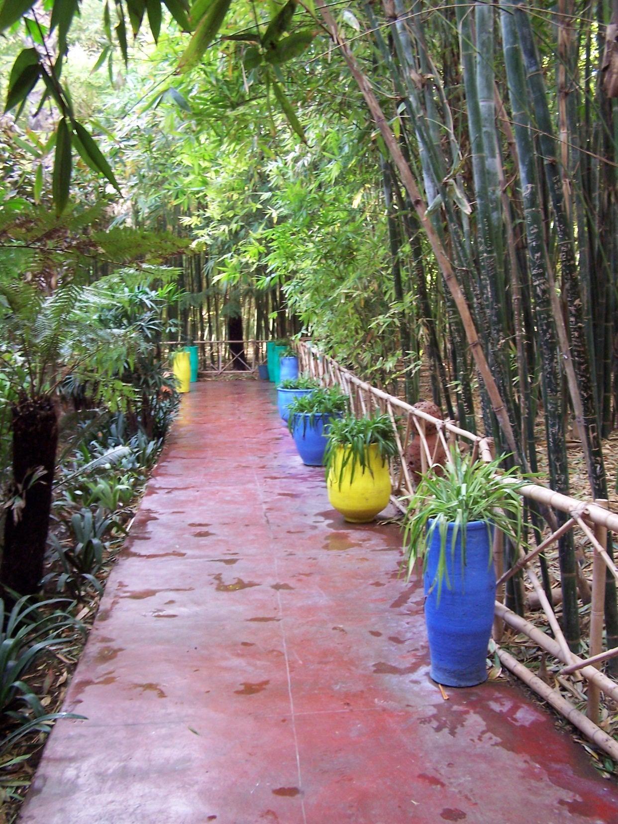 Méditation en marchant Jardin Majorelle Marakech Maroc 2008