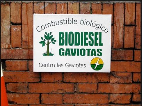 BioDiesel Las Gaviotas Gunter Pauli